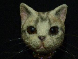 iいつでも一緒猫さんブローチ アメリカンショートヘアの画像