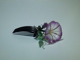 あさがお(紫)の簪(コーム)の画像