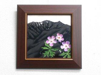 「なつかしの山・思い出の花シリーズ」霞沢岳・ハクサンフウロの画像