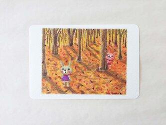 秋の森のかくれんぼ ポストカードno.060の画像