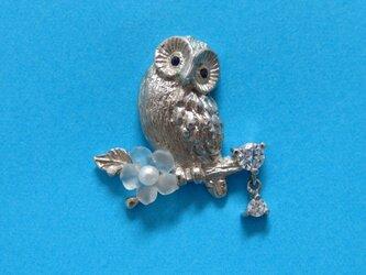 シルバー フクロウ タイピンブローチの画像