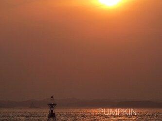 夕日に染まるライトブイ  PH-A4-081    灯浮標 航路標識 東京湾 港湾 ブイの画像