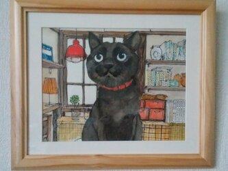 猫と私のいた部屋の画像