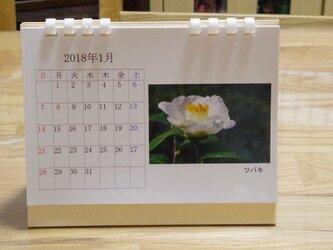 2018年版 卓上カレンダー(季節の花々1)の画像