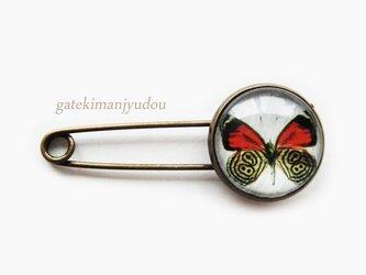 蝶の兜ピンの画像
