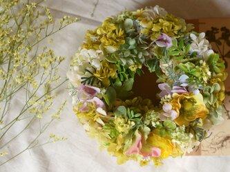紫陽花のリース 〜イエロー&グリーン〜の画像