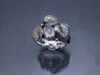 草あそび『金工の指飾り』mr179-05の画像