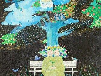 星の樹の画像