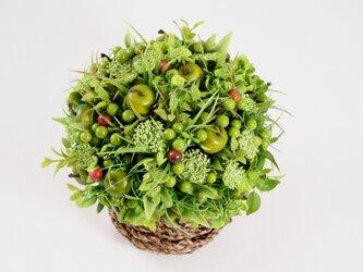 緑のリンゴと山ブドウのバスケットの画像