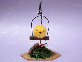 羊毛フェルト 箱庭ヒヨコの画像