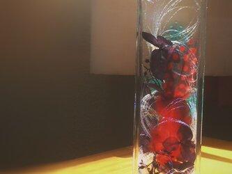 異素材ハーバリウム☆羽&リボン☆ハーバランドの画像