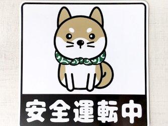 柴犬マグネットステッカー安全運転中  交通安全マグネットの画像