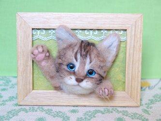癒し子猫 「遊ぼう」 大きめフレームの画像