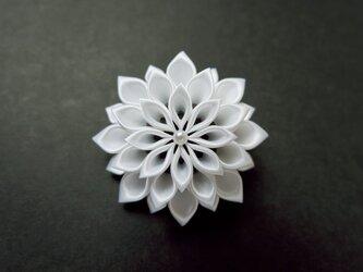 white dahlia lightの画像