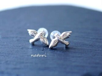 【pigeon】sv925 dove pierce (2pcs)の画像