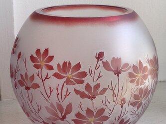 コスモスの丸花瓶の画像