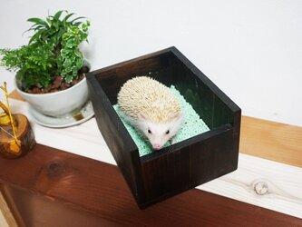 ハリネズミなどの小動物の木製トイレの画像