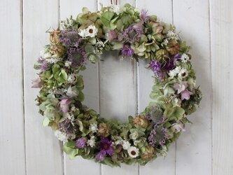 紫の小花の秋色リースの画像