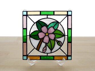 ステンドグラス ミニパネル 桜 15cmの画像