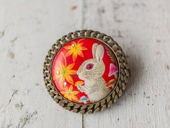 再販:ベージュウサギ、秋の森でキノコを試食するの画像