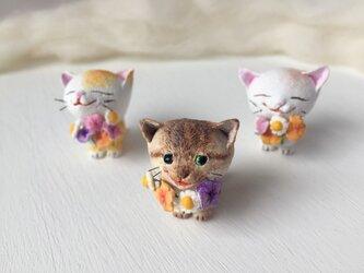大好きだよ!花束猫さん(キジトラ)の画像