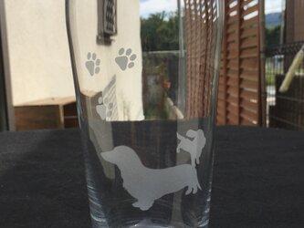 ミニチュアダックスのビールグラスの画像