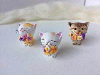 大好きだよ!花束猫さん(白×茶トラ)の画像