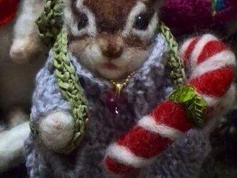☆オーダーメイド☆ シマリスMOMO♪グレーのセーターの画像