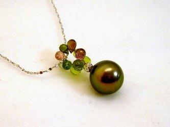 Olive(オリーブ)の画像