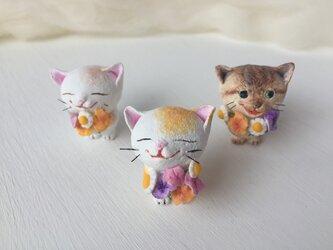 大好きだよ!花束猫さん(白×黄色トラ)の画像