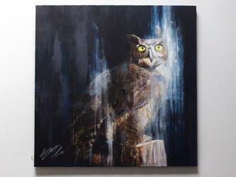 owl / フクロウの額入り作品の画像