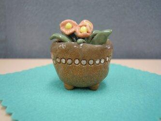 ミニ花鉢の画像
