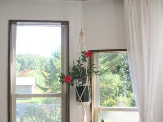 【再販売】マクラメ編みのプラントハンガーの画像