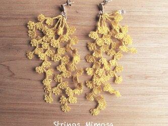 受注*Pierces,Flower strings_mimosaの画像