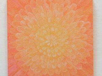 アートパネルNo.43「光の花」の画像