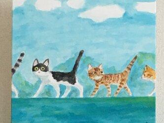 猫の行進2017の画像