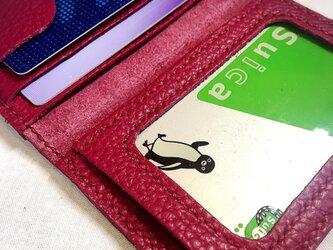 (受注作成)パスケース♪ADRIA Dahila 外側ポケットの画像