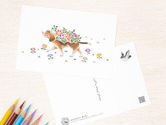 """5枚セット。絵本のような。ポストカード """"花を飾った犬のチェロ"""" PC-310の画像"""