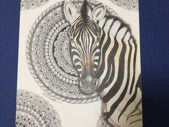 原画 肉筆 一点もの ボールペンアート しまうま ゼブラ 縞馬  百貨店作家 人気 ボールペン画 絵画の画像