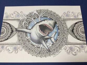 原画 肉筆 一点もの ボールペンアート  シャーク 鮫 サメ  百貨店作家 人気 ボールペン画 絵画の画像