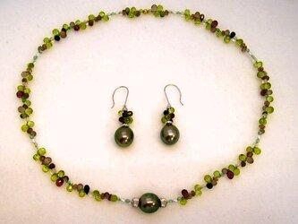 Olives(オリーブ)の画像