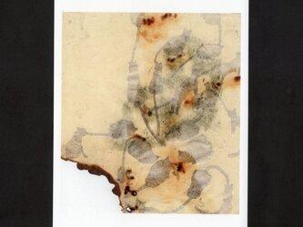 【再販】選べる2枚セットポストカード「Synapse」の画像