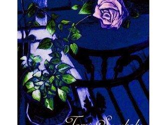 ポストカード「25・夜の薔薇」2枚セットの画像