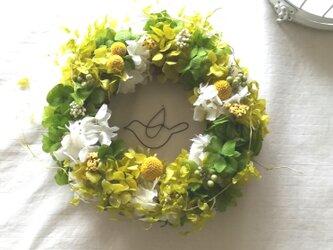 【送料無料】フライングバードのgreen  wreathの画像
