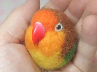 ルリコシボタンインコ  ☆選べる2タイプ☆(Aマグネット・Bクリップ付ブローチピン)  コロコロ♪丸顔  羊毛の小鳥の画像