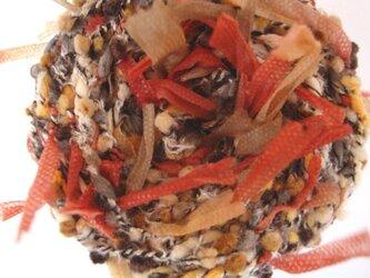 茶色ツブツブ&ヒラヒラ糸の画像