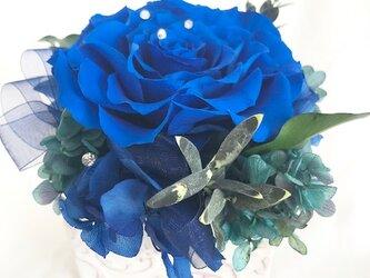 プリザーブドフラワー幸福の青い薔薇 魔法の枯れないお花【リボンラッピング付き】の画像