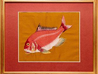 手刺繍 MPK刺繍絵(伊藤若冲の鯛)の画像