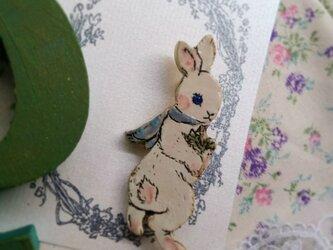 柊の葉っぱをもった白ウサギちゃん の画像