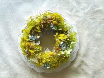 【送料無料】ライトグリーンのwelcome   wreathの画像